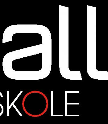 Balle_logo_Friskole_neg_orange